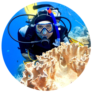 PADI Coral Reef Conservation Specialty