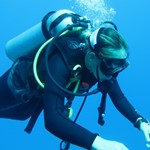 dive hurghada-diving-dive-diver-underwater-red sea-hurghada-egypt