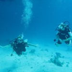 dive hurghada-diver-buddy-red sea