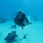 dive hurghada-buddy-diving