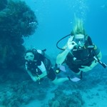 dive hurghada-diving-dive