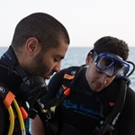 daily_diving _dive hurghada