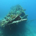 dive hurghada-dive-divier-wreck-abu nuhas-hurghada-red sea-egypt-undere