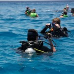 dive hurghada-diving-scuba-