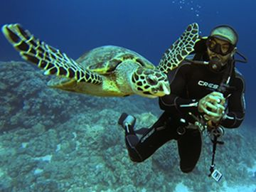 Scuba Diving in Hurghada