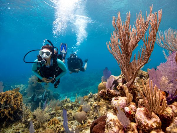 Scuba Diving and Covid 19